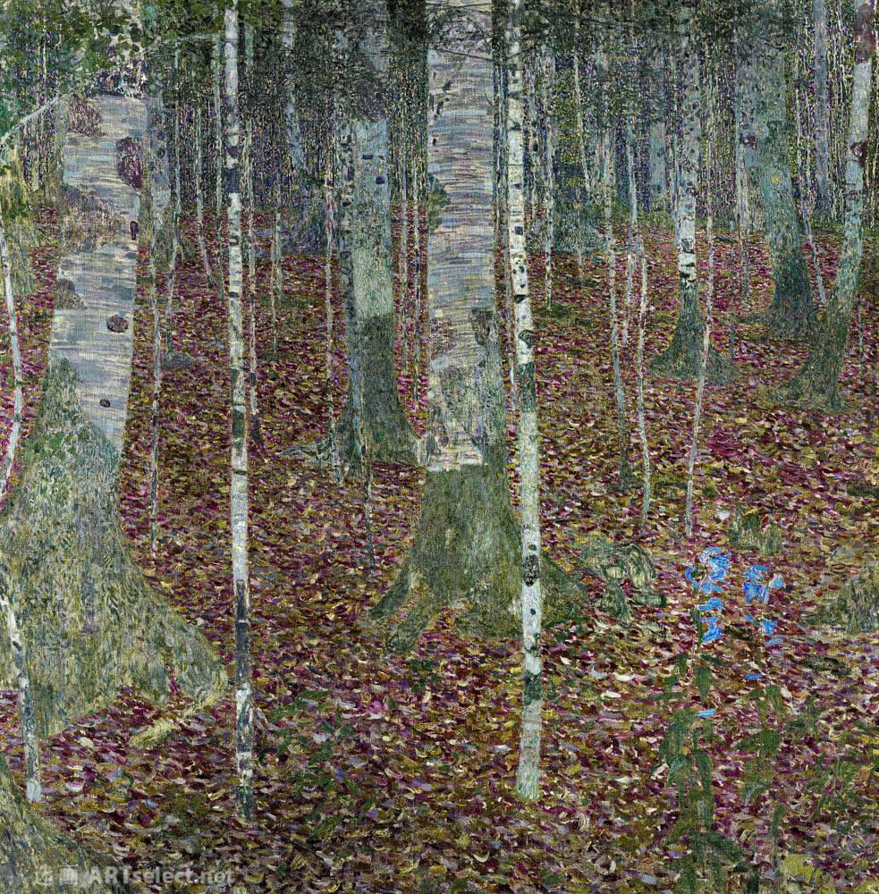 白桦木森林
